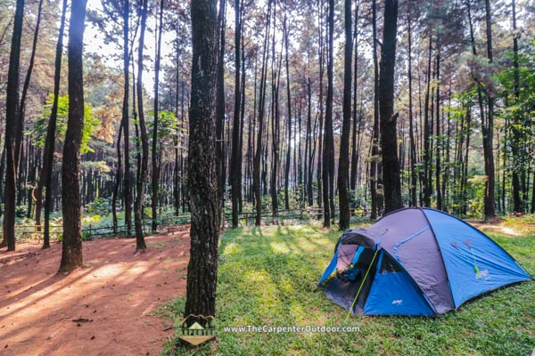 camping-for-web-page-2