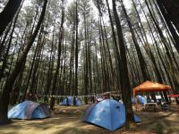 Explore Nature Camp