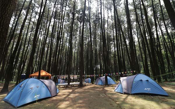 Tempat camping sentul bogor
